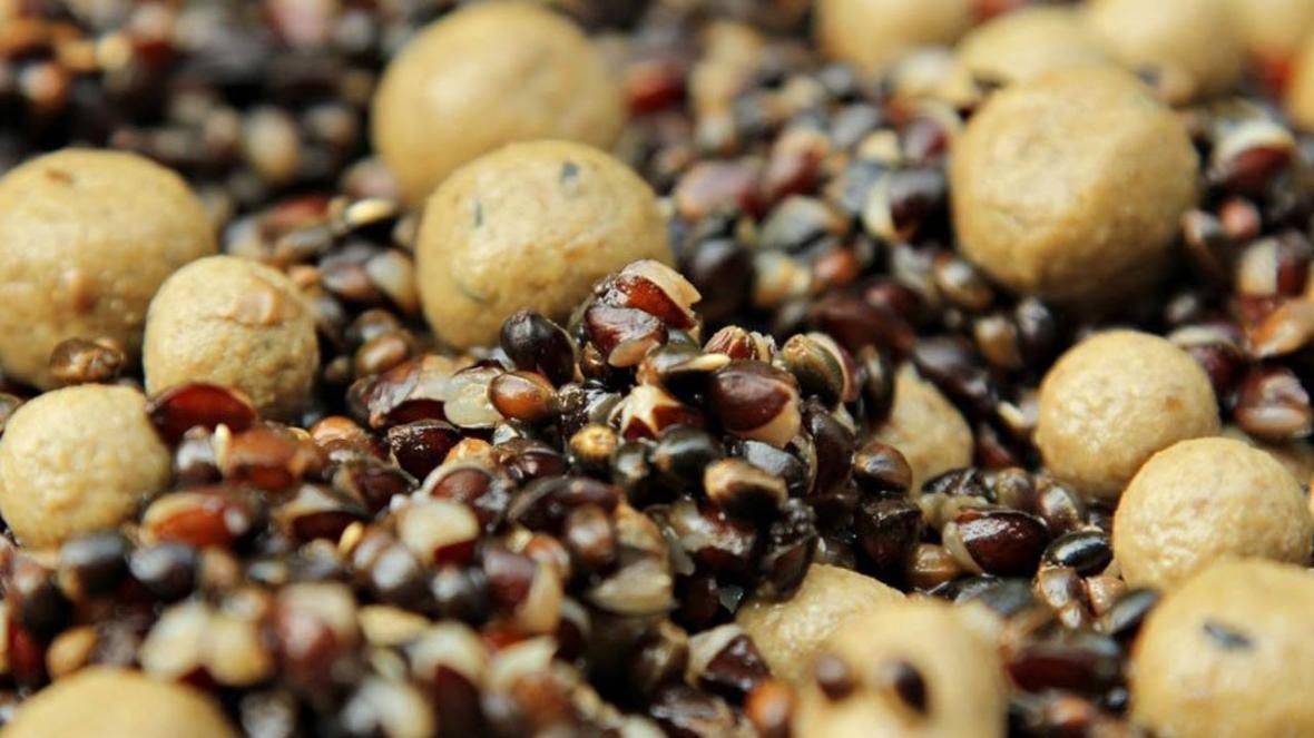 конопляные семена для карповых